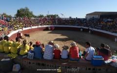 Toros día 25 - San Bartolomé 2015